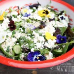Groene salade met romige tahindressing en eetbare bloemen