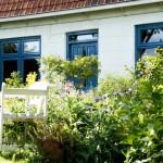 Lief Huisje Zeeland in Zeeuws-Vlaanderen