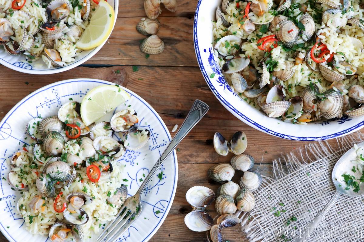 Kokkels met orzo (rijstvormige pasta)